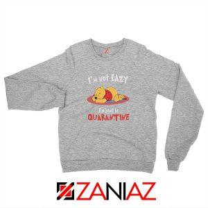 Pooh Quarantine Sport Grey Sweatshirt