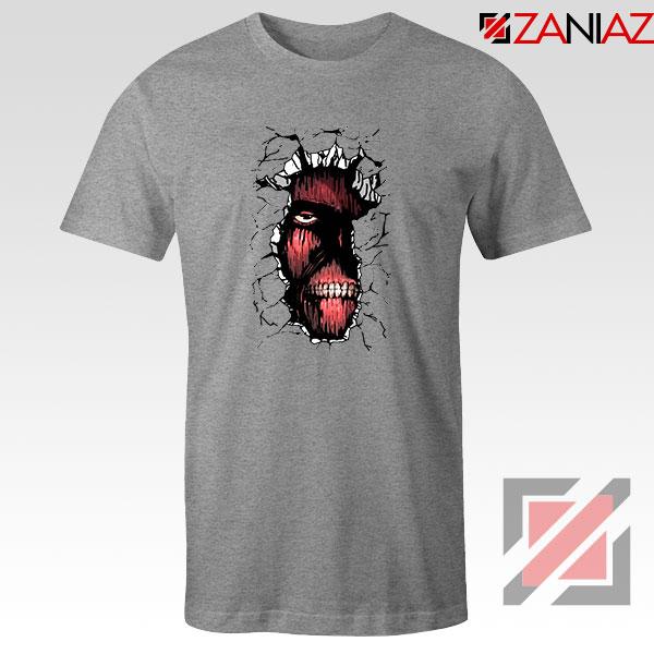 Titan In The Wall Sport Grey Tshirt